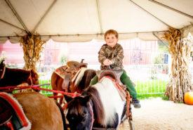 boy having fun on pony ride