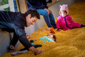 Family Fun in the Corn Kernel Pool at Bengtson Farm