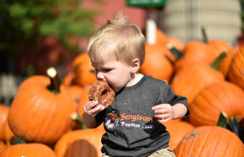 Baby eating Apple Cider Donuts at Bengtson Pupkin Farm