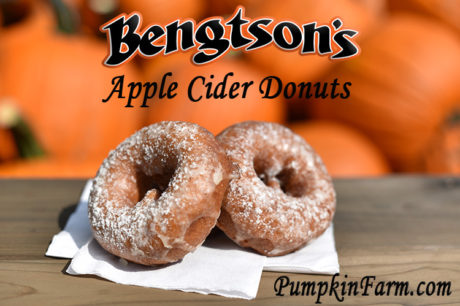 Hot Fresh Apple Cider Donuts - Chicago's Best
