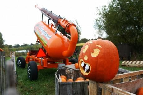 Pumpkin Chucker