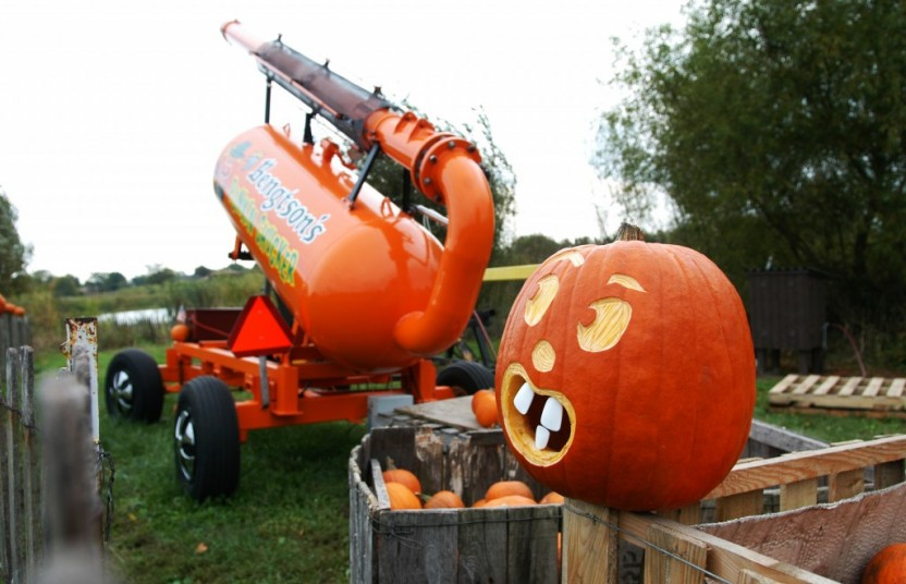pumpkin with face near launcher