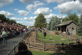 Pig race show