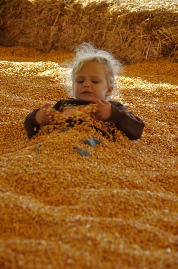 child enjoying pumpkin farm attractions