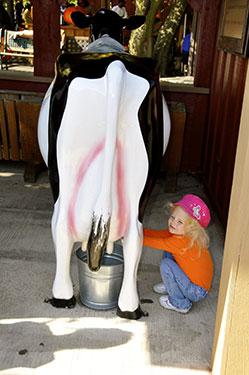 milking-cowbb