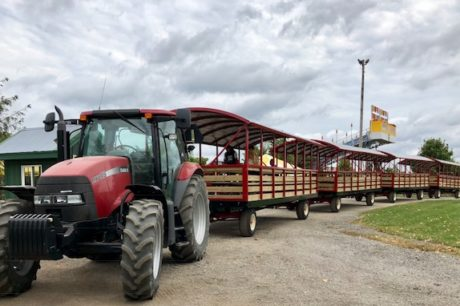 Tractor Pulled Hayrack Rides