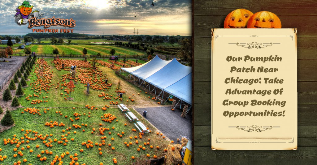 Our Pumpkin Patch Near Chicago Group Booking Opportunities