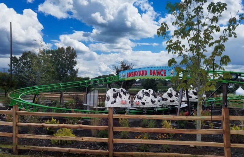ALL NEW COW SPIN COASTER