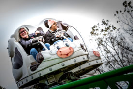 people riding cow roller coaster
