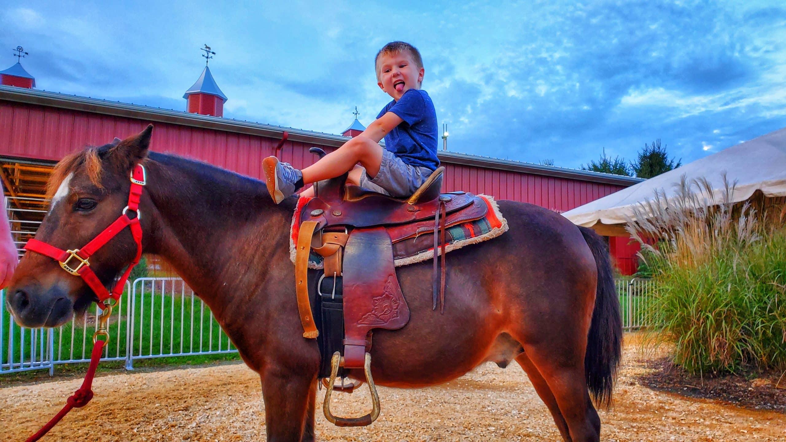 Happy Boy on a Pony