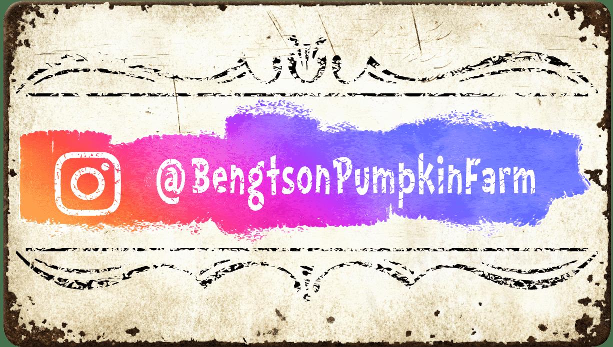 Follow Bengtson Farm on Instagram
