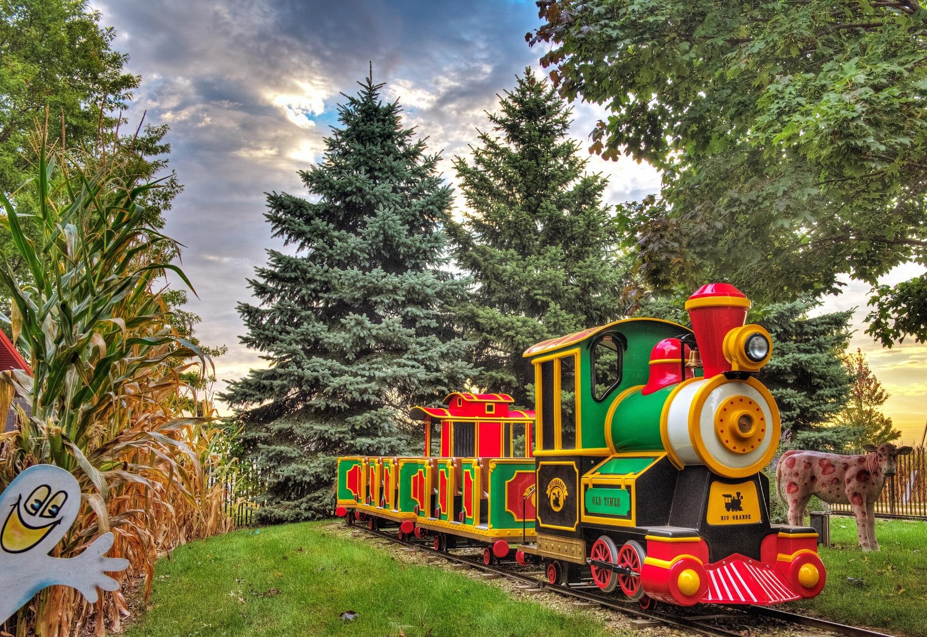 Train Ride at Farm